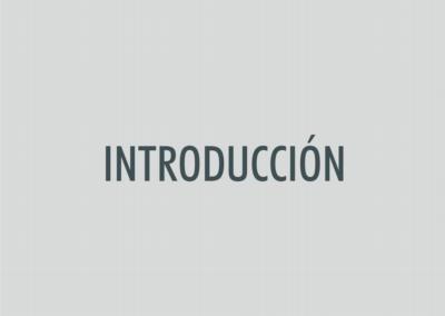 ASIGNATURA introducción RERU